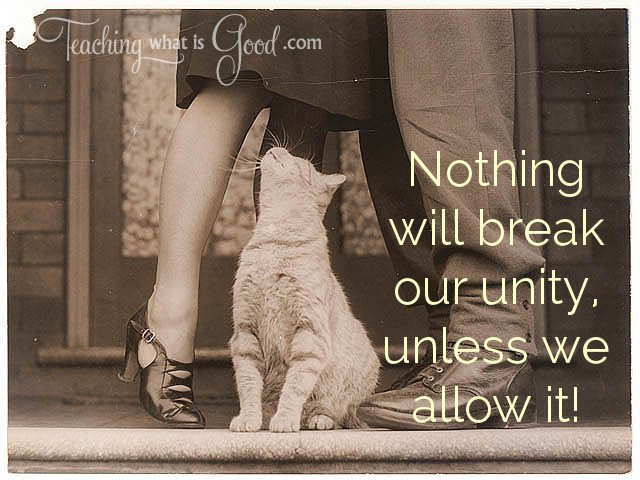 nothing will break our unity unless we allow it