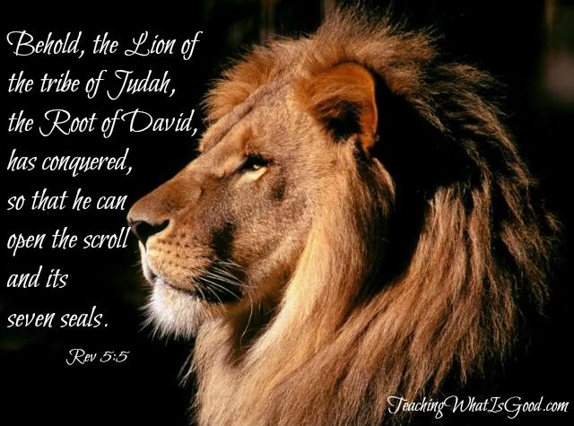 Image result for the lion of judah