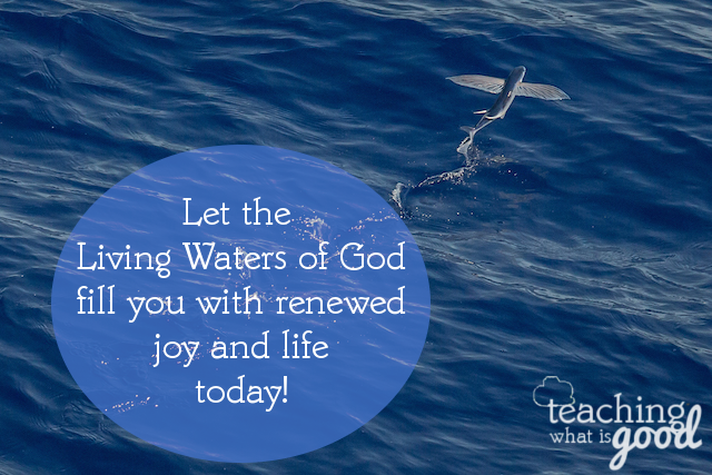 Let God's living water fill you and refresh you