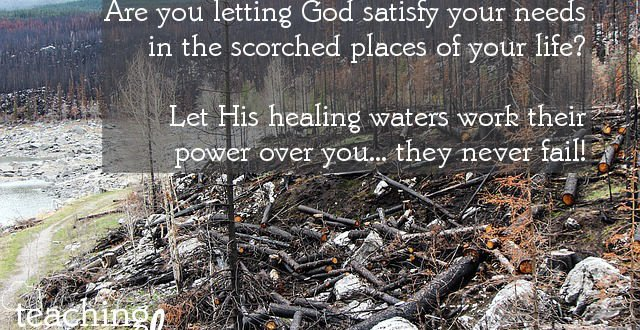 The Lord brings refreshment to our scorched places.