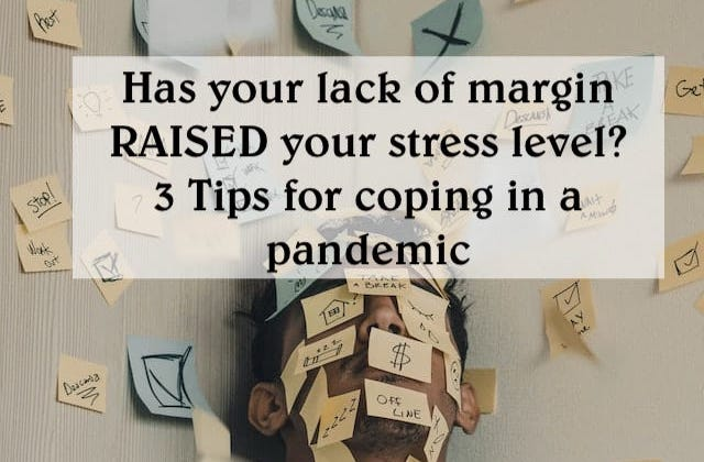 stress and margin in a pandemic