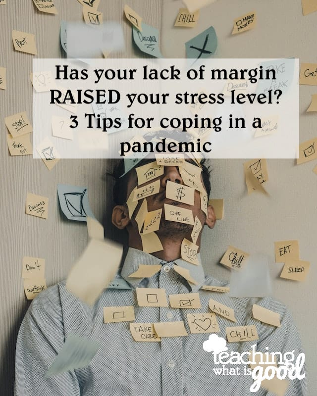 stress in a pandemic